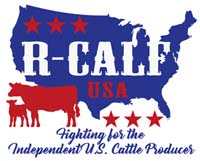 Demand USA Beef Logo